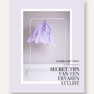 Online styling eboek secret tips van een ervaren stylist